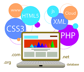 Custom Web Programming