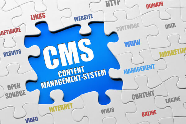 WordPress CMS Websites - Content Management Systems